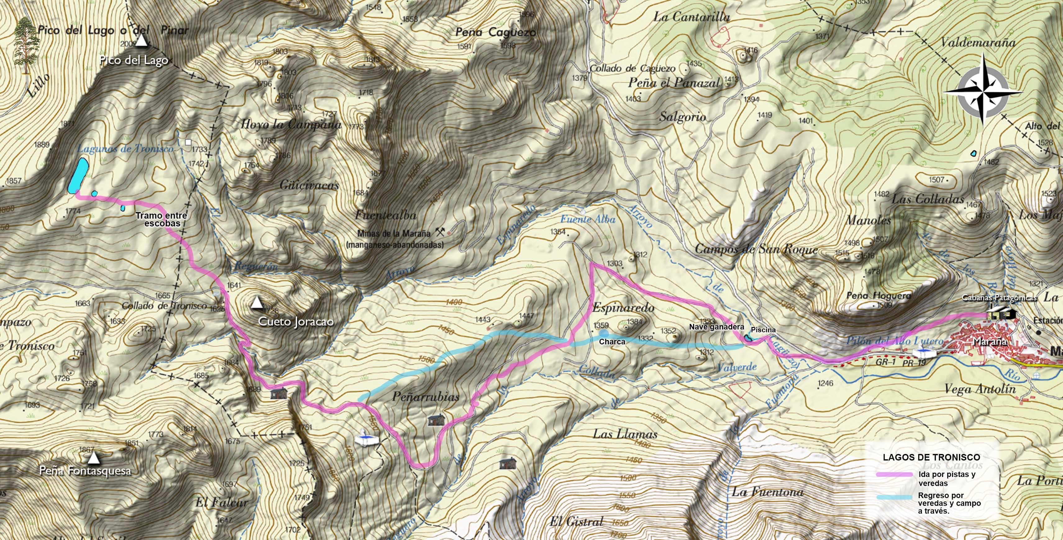 topográfico Tronisco