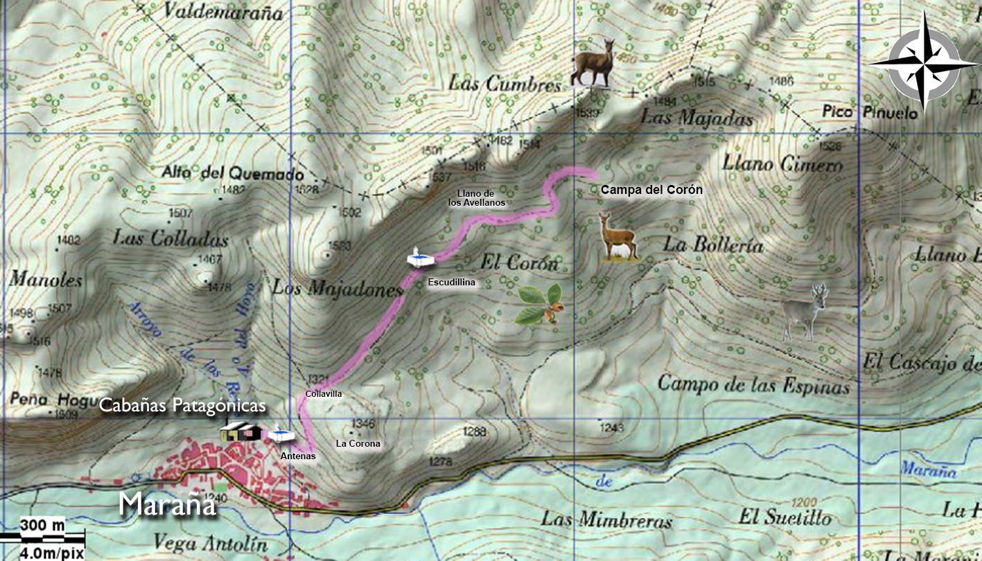 Mapa detallado Corón